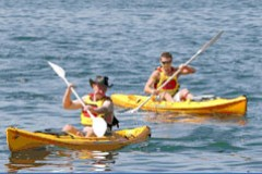 Manly Kayaks - Hervey Bay Accommodation