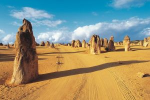 Pinnacles Desert Koalas and Sandboarding 4WD Day Tour from Perth - Hervey Bay Accommodation