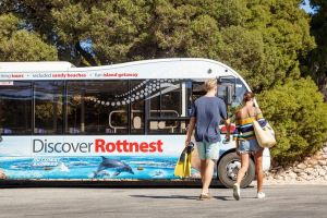 Rottnest Island Tour from Perth or Fremantle including Bus Tour - Hervey Bay Accommodation