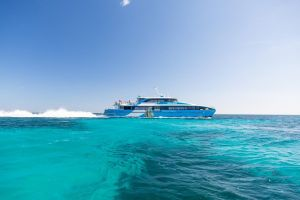 Fremantle to Rottnest Island Roundtrip Ferry Ticket - Hervey Bay Accommodation