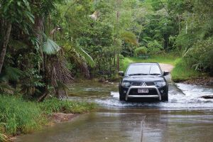 The Pioneer Valley and Eungella National Park - Hervey Bay Accommodation